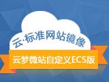 云·标准网站镜像