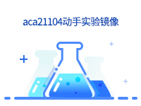 aca21104动手实验镜像